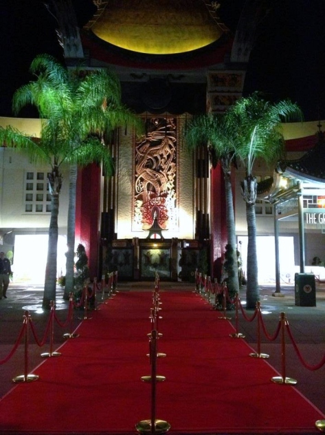 Red carpet rolled out for movie premier.