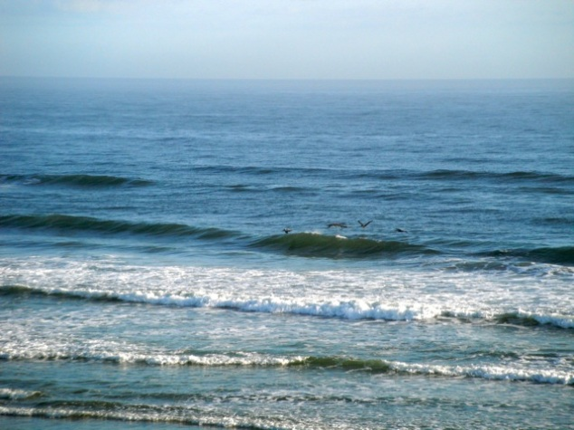 I could listen to the waves all day!