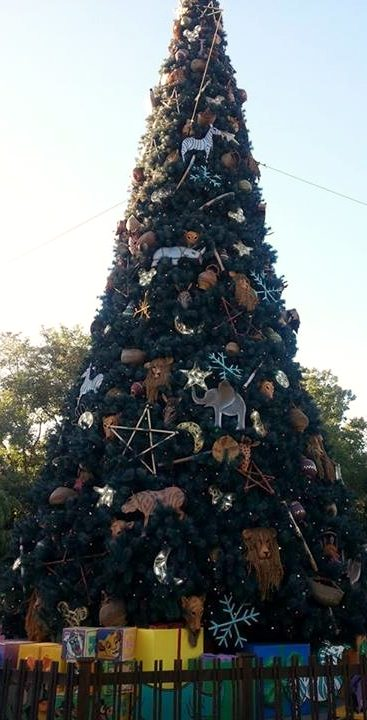 Christmas tree at Animal Kingdom.