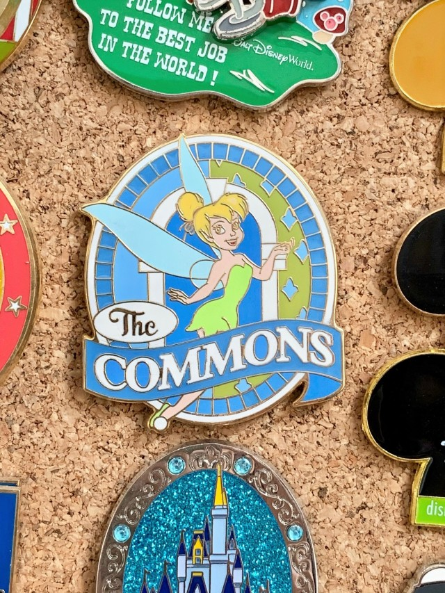commons pin2