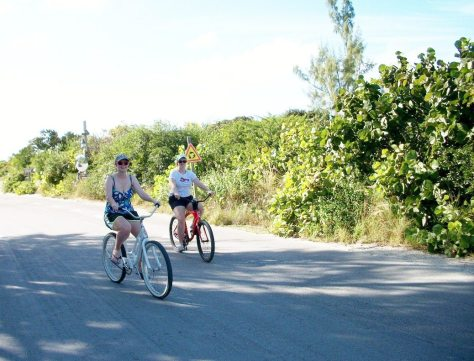 Bicycling around the entire island. The island vegetation was so thick it reminded us of Jurassic Park!