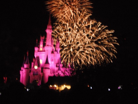 We had the perfect viewing of Wishes!