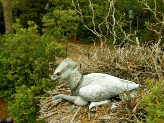 Hippogriff sitting on its nest.