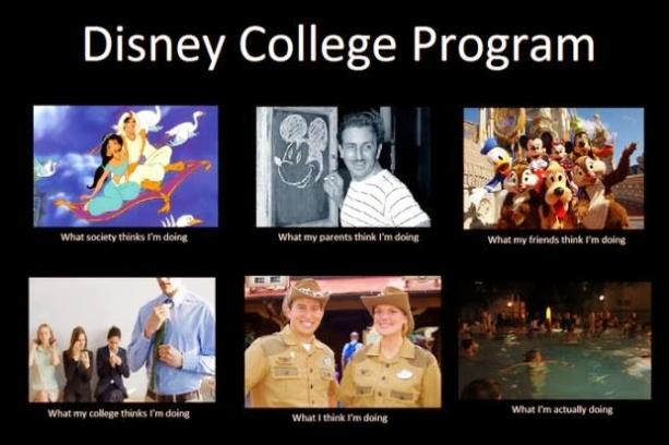 dcp program (2)