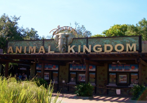 Disney's Animal Kingdom theme park.