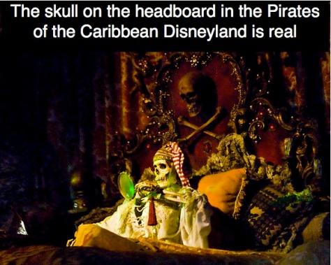 That skull & bones are real!!!