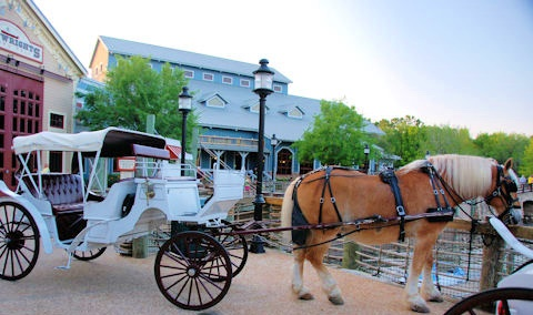 A romantic carriage ride for two at Port Orleans.