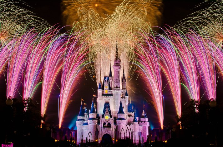 Disney has the best fireworks shows in the world!