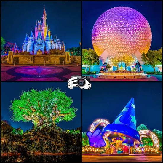 Four Parks, One World
