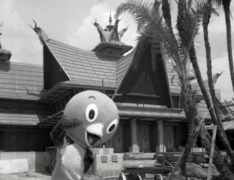 Orange Bird walking around Adventureland (under construction) at Walt Disney World.