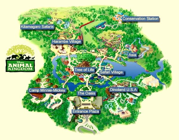 Disney's Animal Kingdom is the largest of the four parks at WDW.