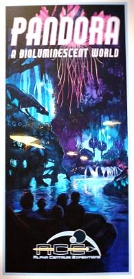 Pandora boat ride