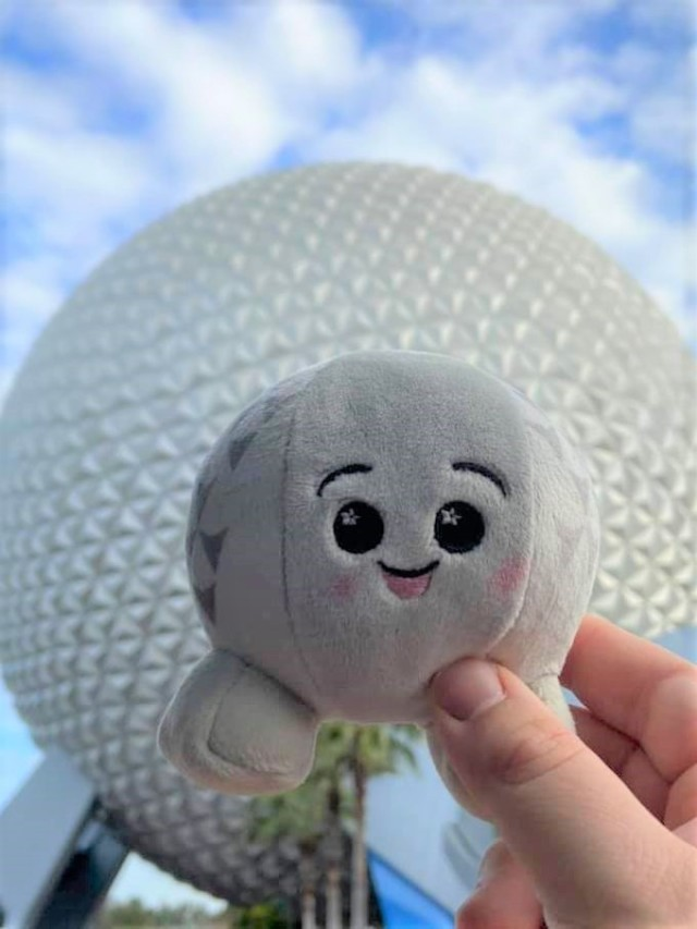 epcot wishable