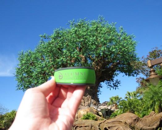 DAK Tree