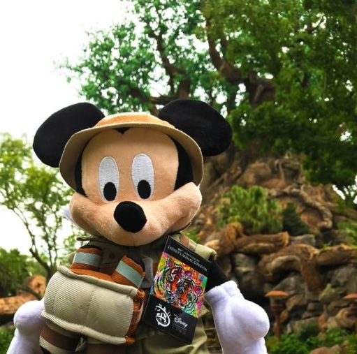 20th DAK Mickey