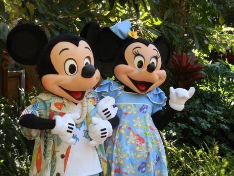 mickey hawaii