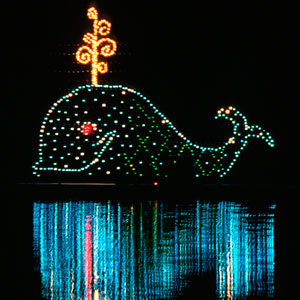 Electrical-Water-Pageant-Whale