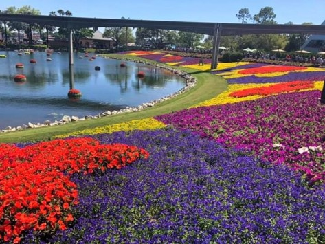 flower epcot