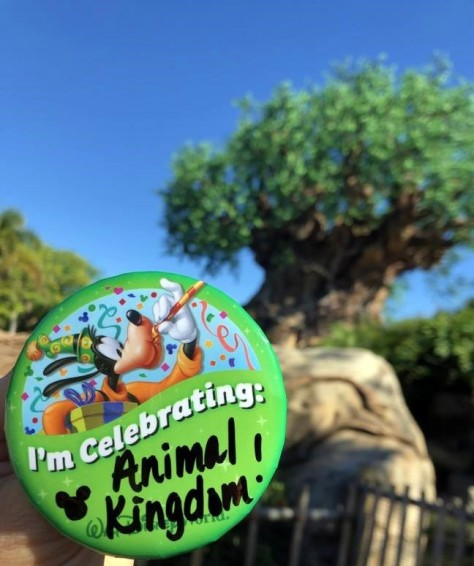DAK celebration button