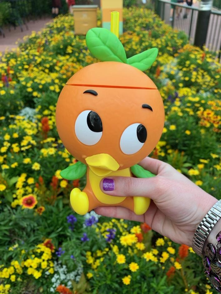 orange bird sipper