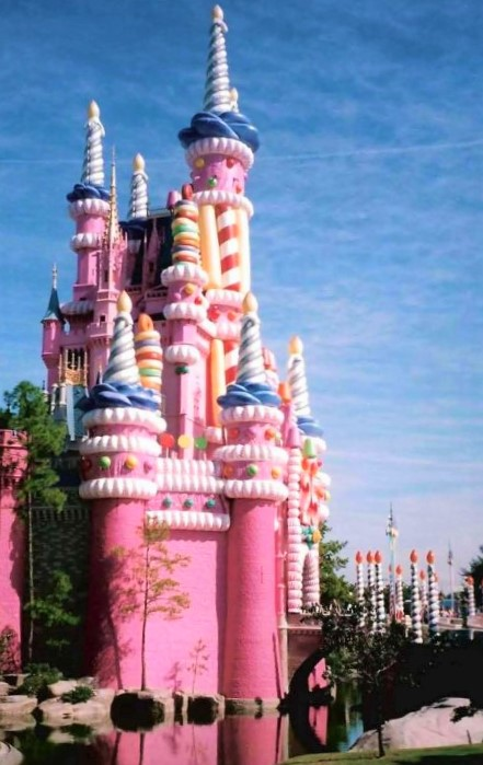 25th-anniversary-pink-castle