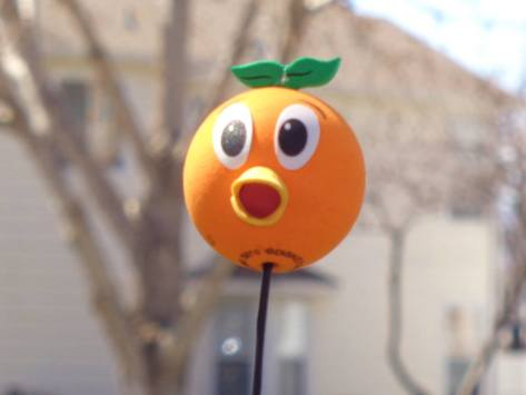 Orange Bird car topper