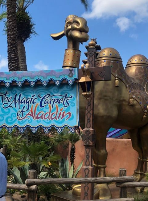 spitting-camel-magic-kingdom-adventureland-returns-refurbishmend-may-2019