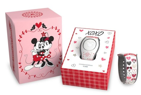 Celebrating-Valentines-Day-at-Walt-Disney-World-Merchandise