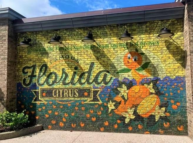 Orange Bird Wall Disney Springs