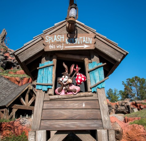 splash_mountain